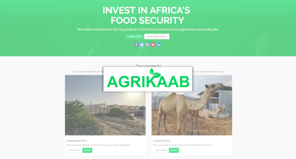Agrikaab Review (2020) - Agricultural Investments in East Africa