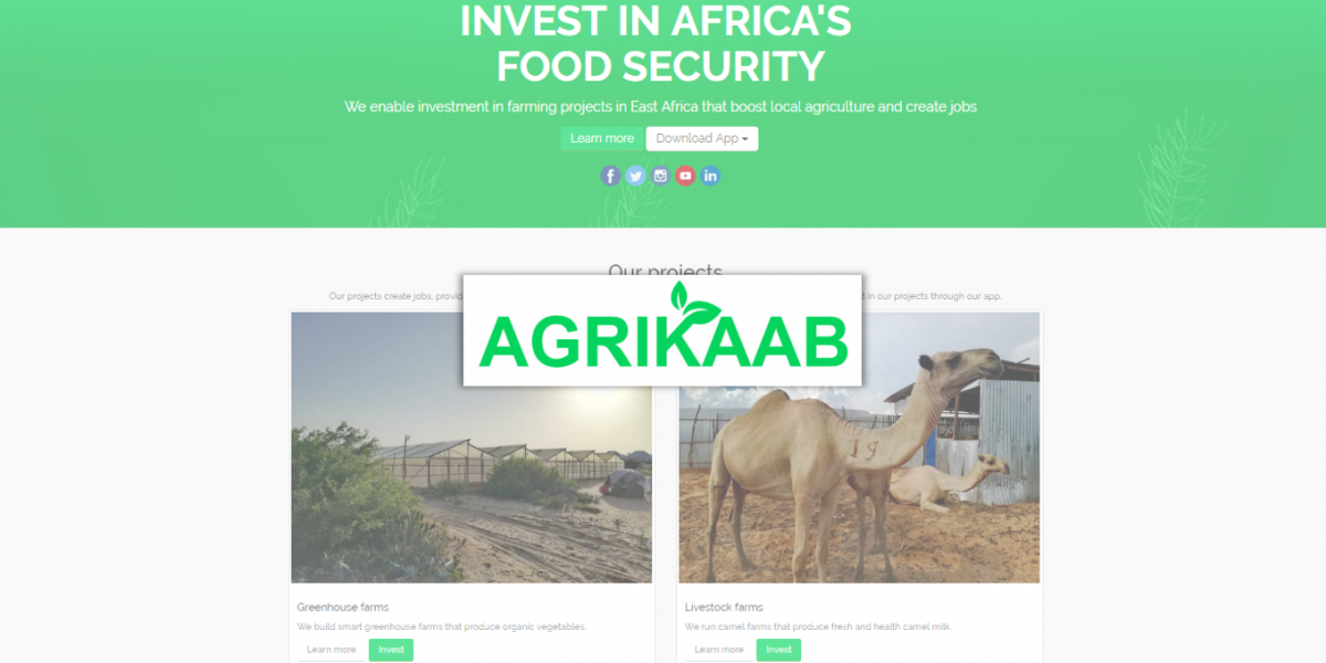 Agrikaab Review (2019) - Agricultural Investments in East Africa
