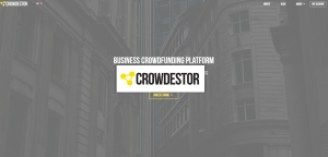 Crowdestor Platform Review